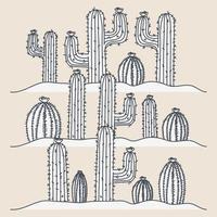 Hand drawn cacti drawing vector