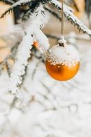 Shiny ball on a spruce branch - Christmas decoration of the Christmas tree photo