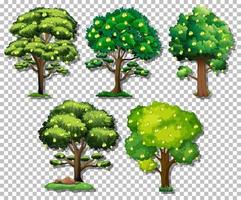 Set of different trees vector