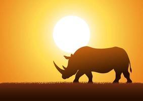 Rhinoceros against sunset background vector