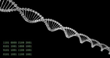 Analyzing DNA structure, forensic research, genes genetic disorders, science video