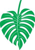 Leaf Of Monstera - Tropical Plant vector
