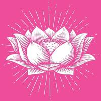 Lotus Flower - Hand Drawn Style vector