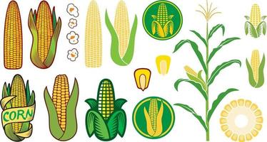Corn Icons Collection vector