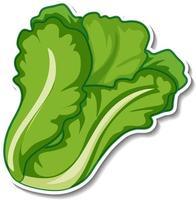Lettuce sticker on white background vector