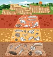 Scene with various animals bones and dinosaurs fossils in soil layers vector