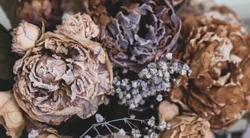 A bouquet of dried withered flowers photo