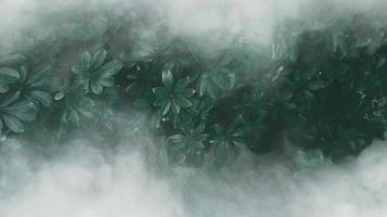 folha verde tropical com nevoeiro. tema em tons escuros. video