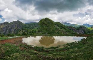 Lago alpino sucio de tierra con planta reflejada foto