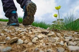 Mountain trail with shoe detail walking near a flower photo
