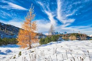 paisaje de montaña con otros colores otoñales y las primeras nieves foto