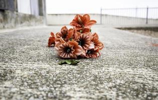 corona de rosas rojas foto