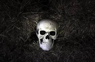 cabeza de cráneo humano foto