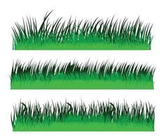 Green grass pattern Vector Design