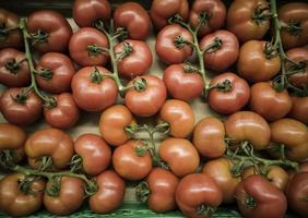 Vine tomatoes in a market photo