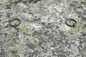 tumba con musgo foto