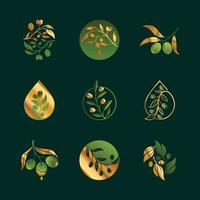 Gold and Green Olive Branch Logo Set vector