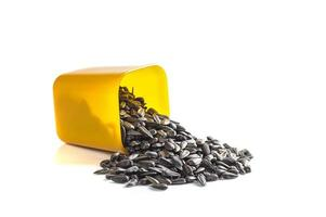 Sunflower Seeds in container on white background. Helianthus annuus. photo