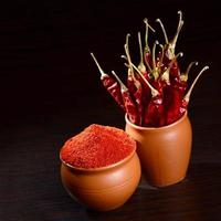 chilly powder with red chilly in clay pots, dried chillies on dark background photo