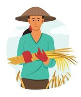 Asian Woman Farmer Hold the Dry Rice from Harvest in Paddy Field. vector