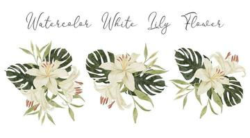 watercolor white lily tropical flower arrangement illustration with monstera vector