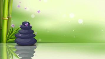 Massage Spa Stones video