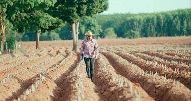 jovem agricultor caminhando e segurando um laptop na área cultivada video