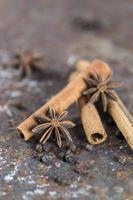 Cinnamon sticks, anise stars and black peppercorns on textured background photo