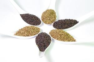 Brown Mustard and cumin seeds on white background photo