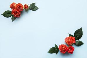 Flowers composition. Frame made of red  roses and leaves on blue background photo