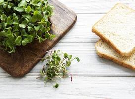 microgreens de rábano rojo y pan foto