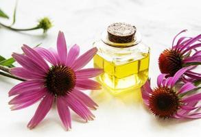 equinácea y aceites esenciales sobre fondo de mármol. foto