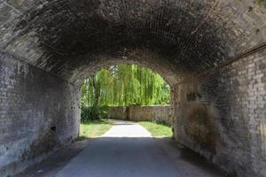 Underpass leading to large weeping willow photo