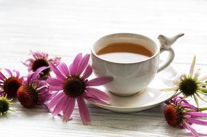 té de equinácea con limón y flores frescas. foto
