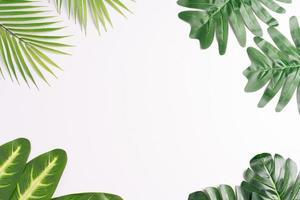 Las hojas tropicales se enmarcan dejando un espacio en el medio, fondo de verano foto