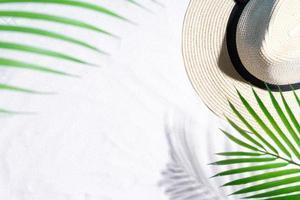 hojas de palmera proyectan sombras sobre la arena foto