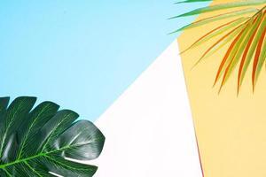 Fondo de verano con hojas sobre fondo amarillo y rosa. foto