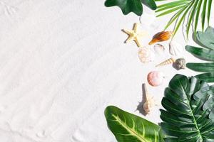 fondo de verano con hojas en la arena foto