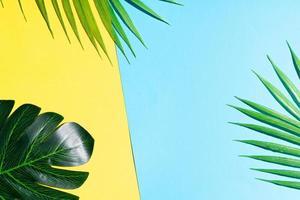 Fondo de verano con hojas sobre fondo amarillo y azul. foto