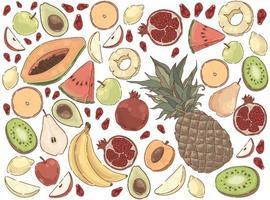 delicioso conjunto de nutrición orgánica de comida de verano vector