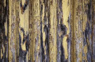 textura de la pared de madera foto