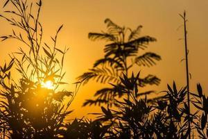 sunrise and its colors photo