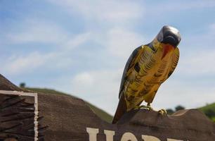 wooden bird for decoration photo