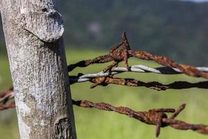 colgando de alambre oxidado foto