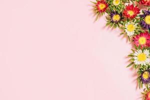 flores de colores dispuestas sobre un fondo rosa foto