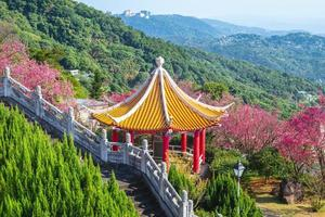 Cherry blossom and Chinese pavilion near Taipei City in Taiwan photo