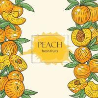 Fruit frame from peaches vector illustration