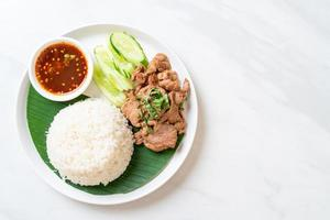 Grilled pork garlic with rice with spicy sauce in Asian style photo