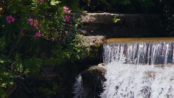 Waterfall in River in Wild Nature video