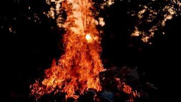 feu en boucle boucle parfaite isolée. élément de feu en boucle, allumage du feu de smotion de bas en haut. flamme de feu isolée video